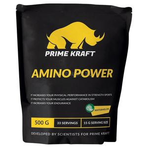 AMINO POWER - 500 г